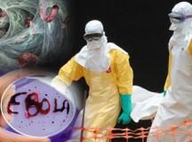 塑料企业扩产应对埃博拉病毒