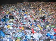 前三季废塑料进口量同比增长19%