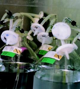 内蒙古医用耗材招标涉及150个品种