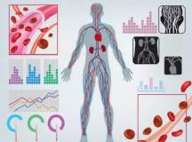 血液透析:那些行业巨头经营之道及未来趋势分析