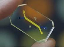 微流控应用:那个存在于芯片中的人体器官