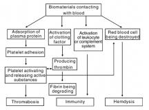 通用高分子材料的化学和生物改性及其血液相容性研究